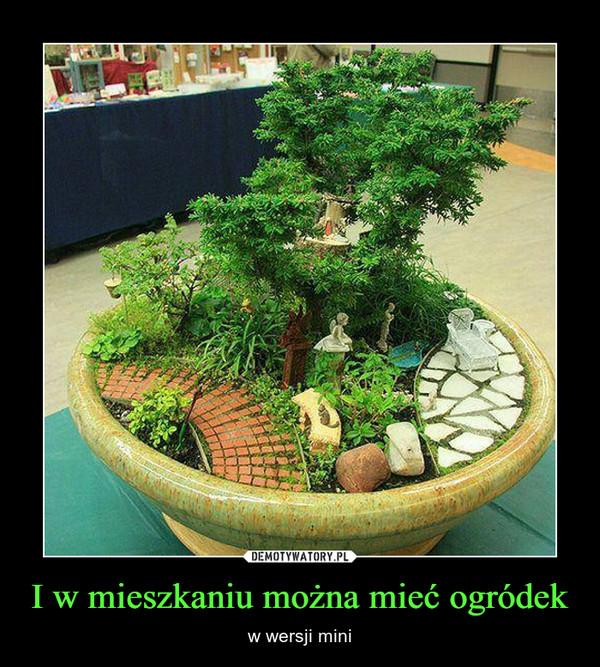 I w mieszkaniu można mieć ogródek – w wersji mini