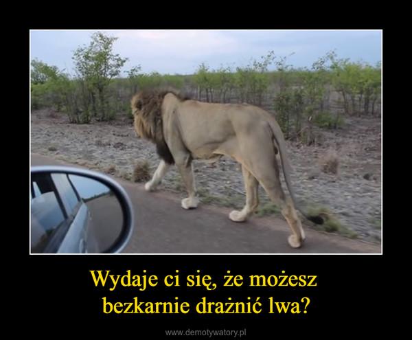 Wydaje ci się, że możesz bezkarnie drażnić lwa? –