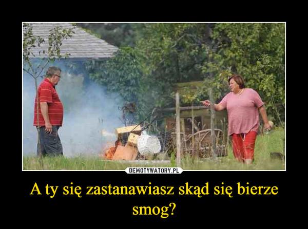 A ty się zastanawiasz skąd się bierze smog? –
