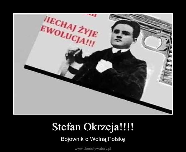 Stefan Okrzeja!!!! – Bojownik o Wolną Polskę