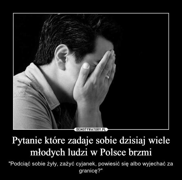 """Pytanie które zadaje sobie dzisiaj wiele młodych ludzi w Polsce brzmi – """"Podciąć sobie żyły, zażyć cyjanek, powiesić się albo wyjechać za granicę?"""""""