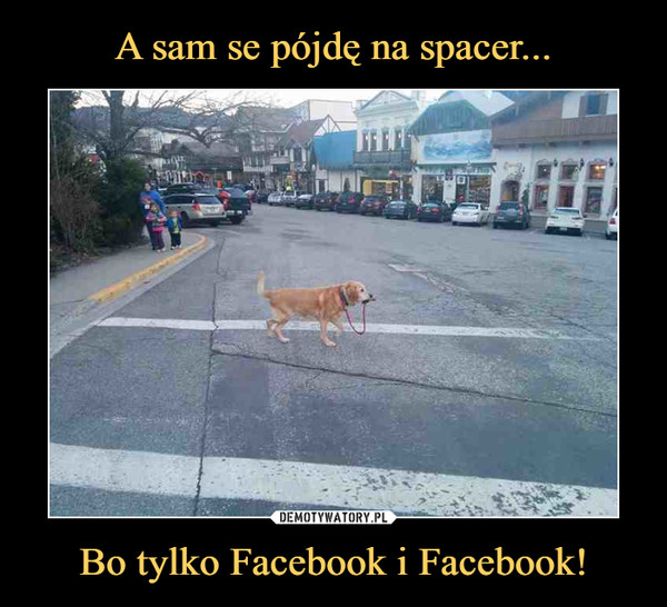 Bo tylko Facebook i Facebook! –