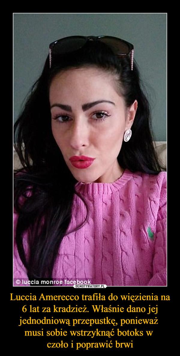 Luccia Amerecco trafiła do więzienia na 6 lat za kradzież. Właśnie dano jej jednodniową przepustkę, ponieważ musi sobie wstrzyknąć botoks w czoło i poprawić brwi –