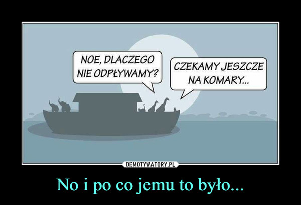 No i po co jemu to było... –