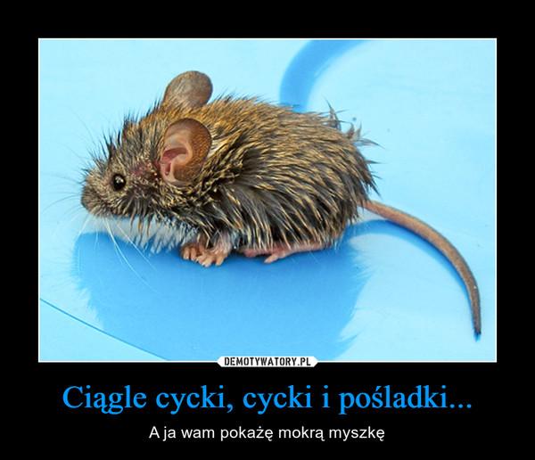 Ciągle cycki, cycki i pośladki... – A ja wam pokażę mokrą myszkę