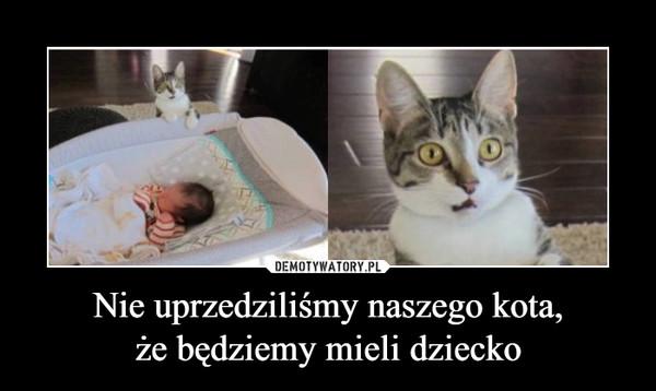 Nie uprzedziliśmy naszego kota,że będziemy mieli dziecko –