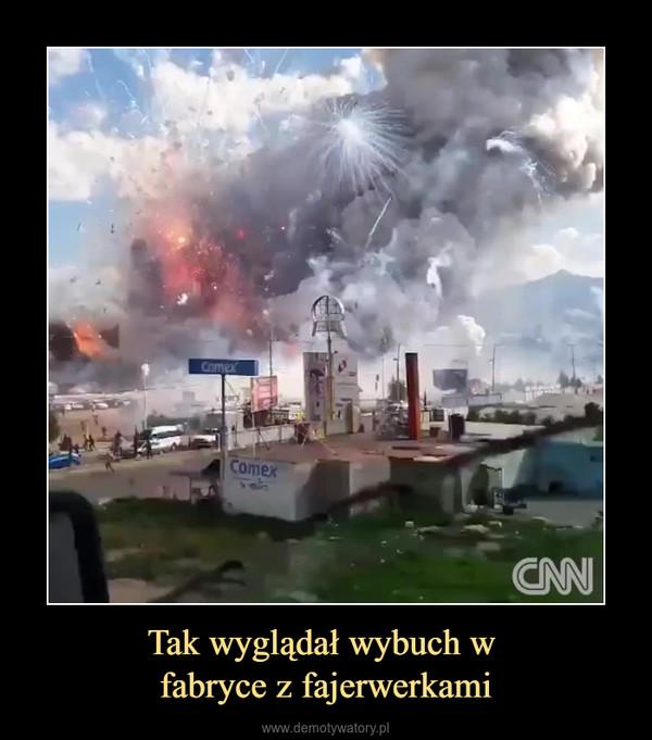 Tak wyglądał wybuch w fabryce z fajerwerkami –