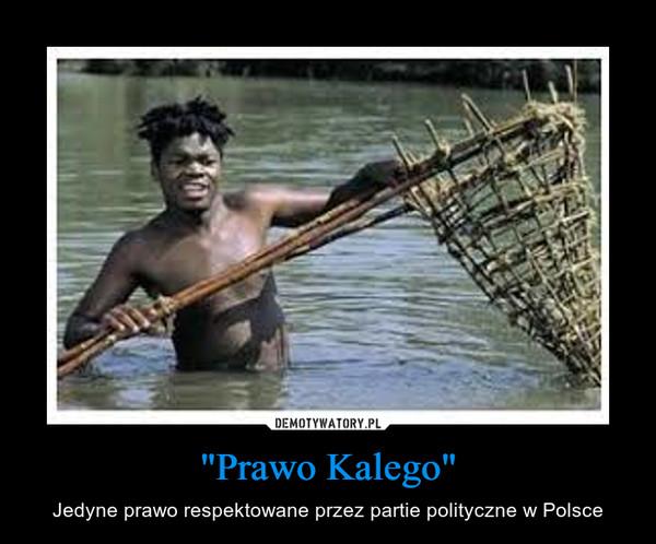 """""""Prawo Kalego"""" – Jedyne prawo respektowane przez partie polityczne w Polsce"""