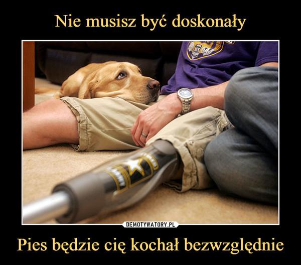 Pies będzie cię kochał bezwzględnie –