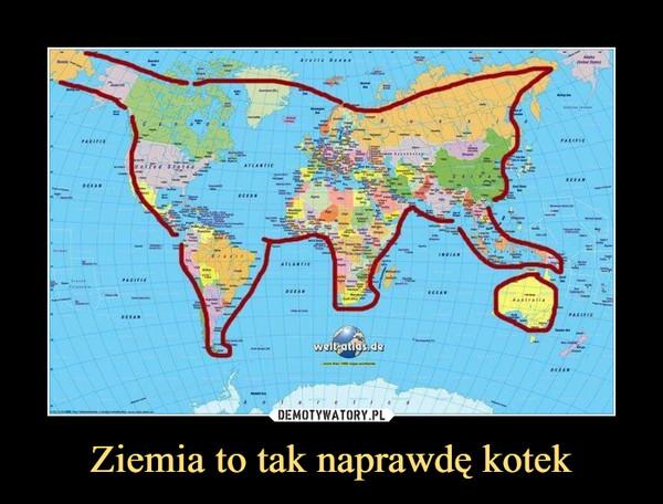Ziemia to tak naprawdę kotek –