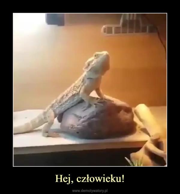 Hej, człowieku! –