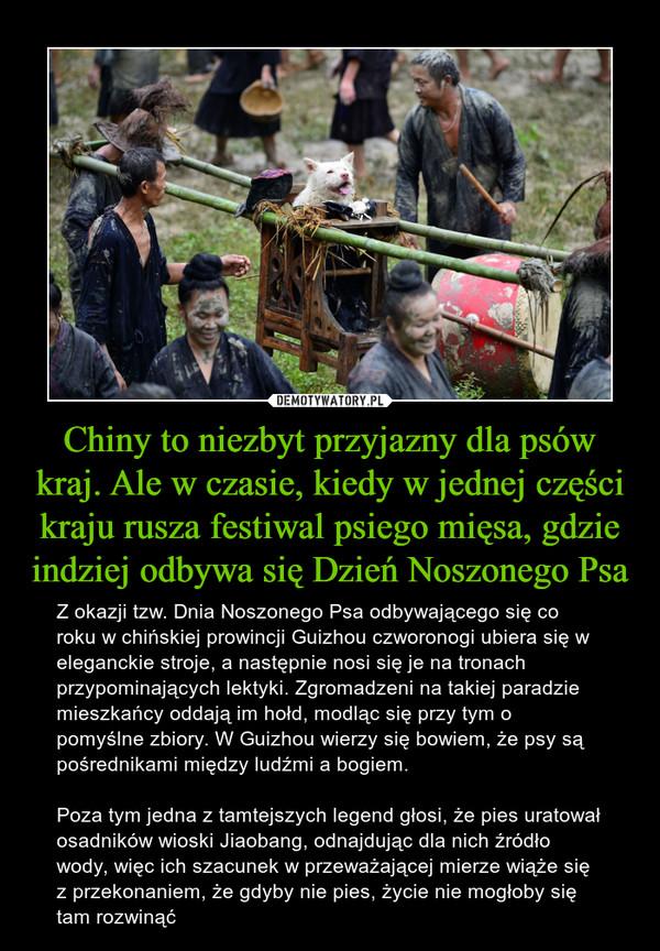 Chiny to niezbyt przyjazny dla psów kraj. Ale w czasie, kiedy w jednej części kraju rusza festiwal psiego mięsa, gdzie indziej odbywa się Dzień Noszonego Psa – Z okazji tzw. Dnia Noszonego Psa odbywającego się co roku w chińskiej prowincji Guizhou czworonogi ubiera się w eleganckie stroje, a następnie nosi się je na tronach przypominających lektyki. Zgromadzeni na takiej paradzie mieszkańcy oddają im hołd, modląc się przy tym o pomyślne zbiory. W Guizhou wierzy się bowiem, że psy są pośrednikami między ludźmi a bogiem. Poza tym jedna z tamtejszych legend głosi, że pies uratował osadników wioski Jiaobang, odnajdując dla nich źródło wody, więc ich szacunek w przeważającej mierze wiąże się z przekonaniem, że gdyby nie pies, życie nie mogłoby się tam rozwinąć