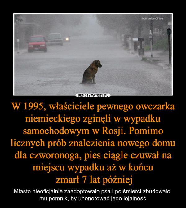 W 1995, właściciele pewnego owczarka niemieckiego zginęli w wypadku samochodowym w Rosji. Pomimo licznych prób znalezienia nowego domu dla czworonoga, pies ciągle czuwał na miejscu wypadku aż w końcu zmarł 7 lat później – Miasto nieoficjalnie zaadoptowało psa i po śmierci zbudowało mu pomnik, by uhonorować jego lojalność