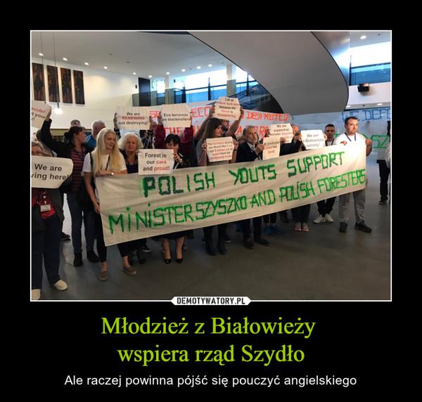 Młodzież z Białowieży wspiera rząd Szydło – Ale raczej powinna pójść się pouczyć angielskiego