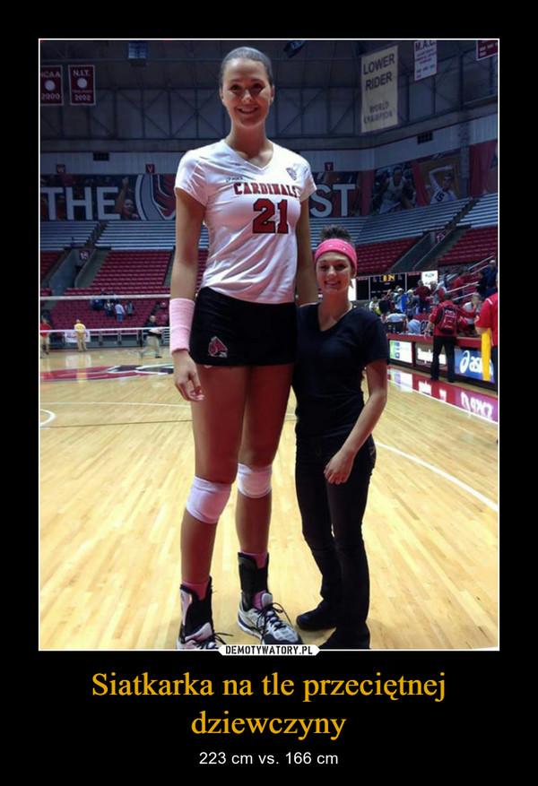 Siatkarka na tle przeciętnej dziewczyny – 223 cm vs. 166 cm