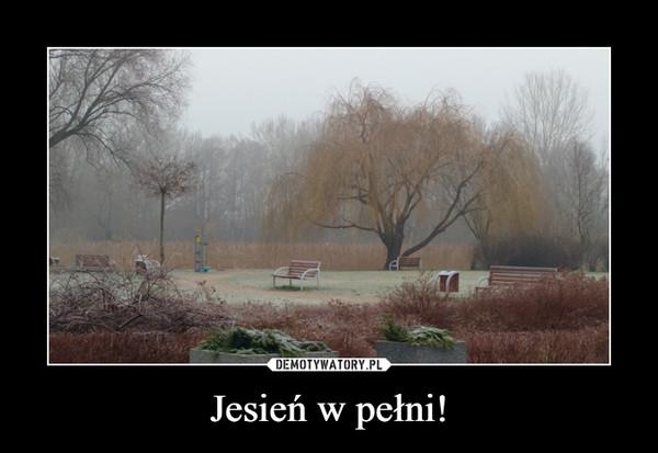 Jesień w pełni! –