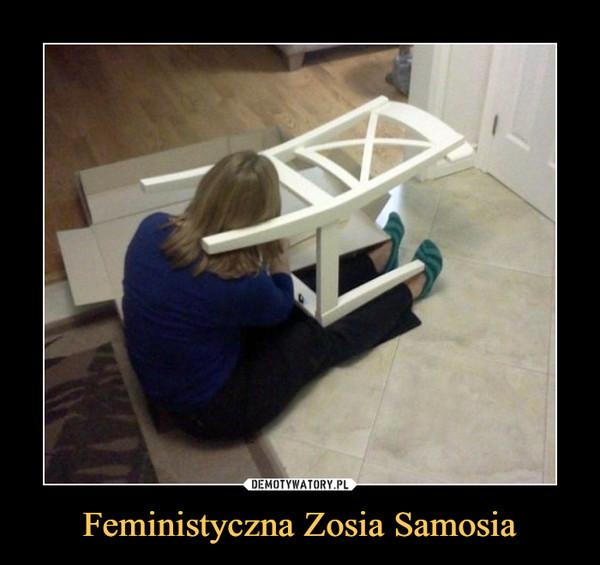Feministyczna Zosia Samosia –