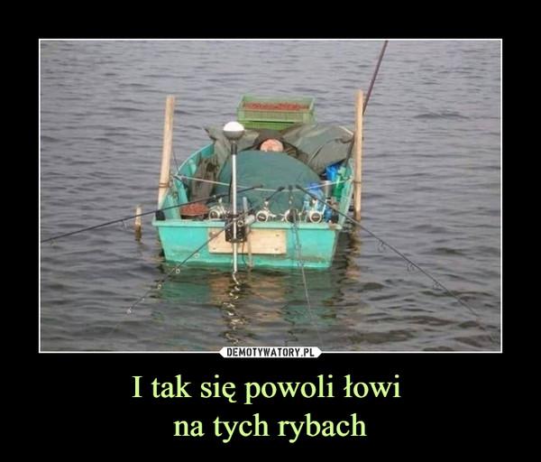 I tak się powoli łowi na tych rybach –
