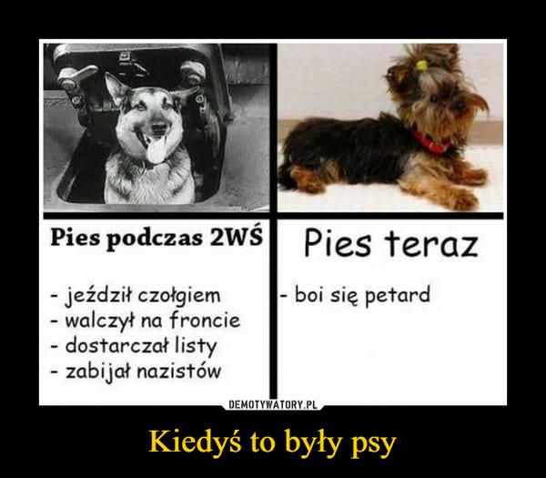 Kiedyś to były psy –  Pies podczas 2WŚjeździł czołgiemwalczył na fronciedostarczał listyzabijał nazistówPies terazboi się petard