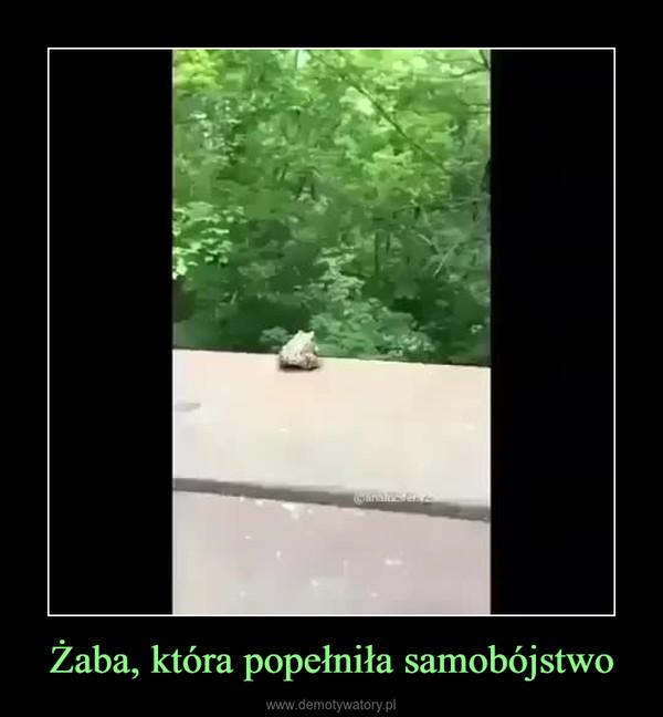 Żaba, która popełniła samobójstwo –