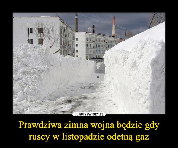 Prawdziwa zimna wojna będzie gdy ruscy w listopadzie odetną gaz –