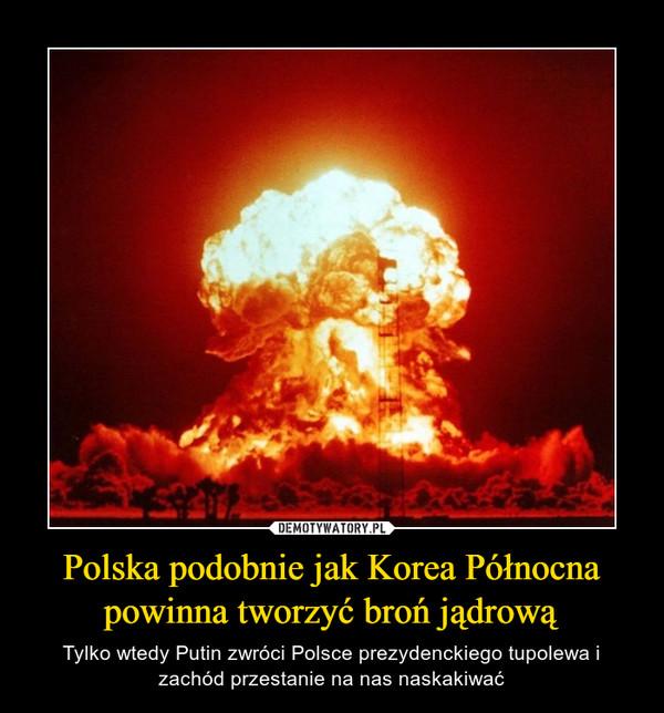 Polska podobnie jak Korea Północna powinna tworzyć broń jądrową – Tylko wtedy Putin zwróci Polsce prezydenckiego tupolewa i zachód przestanie na nas naskakiwać