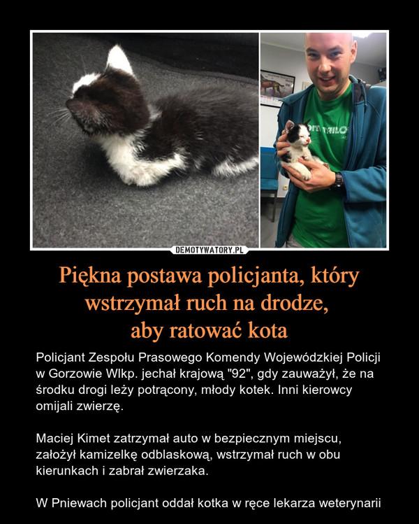 """Piękna postawa policjanta, który wstrzymał ruch na drodze, aby ratować kota – Policjant Zespołu Prasowego Komendy Wojewódzkiej Policji w Gorzowie Wlkp. jechał krajową """"92"""", gdy zauważył, że na środku drogi leży potrącony, młody kotek. Inni kierowcy omijali zwierzę. Maciej Kimet zatrzymał auto w bezpiecznym miejscu, założył kamizelkę odblaskową, wstrzymał ruch w obu kierunkach i zabrał zwierzaka.W Pniewach policjant oddał kotka w ręce lekarza weterynarii"""