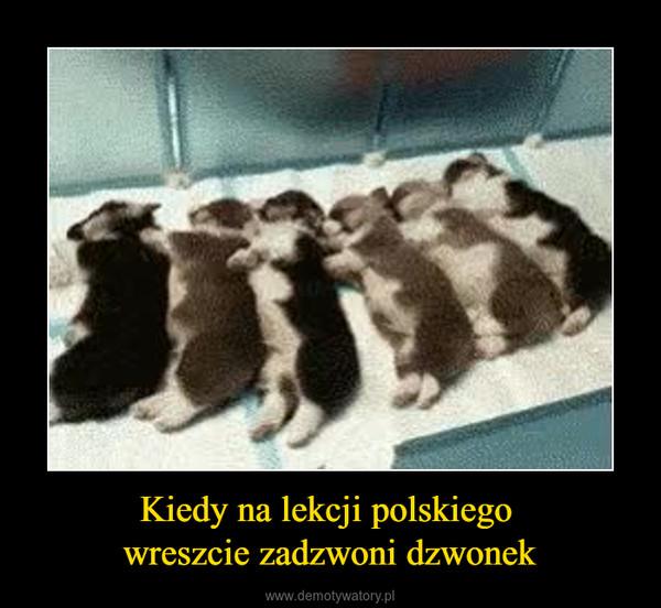 Kiedy na lekcji polskiego wreszcie zadzwoni dzwonek –