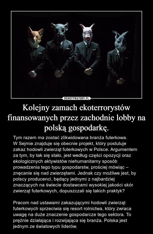 Kolejny zamach ekoterrorystów finansowanych przez zachodnie lobby na polską gospodarkę. – Tym razem ma zostać zlikwidowana branża futerkowa.W Sejmie znajduje się obecnie projekt, który postuluje zakaz hodowli zwierząt futerkowych w Polsce. Argumentem za tym, by tak się stało, jest według części opozycji oraz ekologicznych aktywistów niehumanitarny sposób prowadzenia tego typu gospodarstw, prościej mówiąc – znęcanie się nad zwierzętami. Jednak czy możliwe jest, by polscy producenci, będący jednymi z najbardziej znaczących na świecie dostawcami wysokiej jakości skór zwierząt futerkowych, dopuszczali się takich praktyk? Pracom nad ustawami zakazującymi hodowli zwierząt futerkowych sprzeciwia się resort rolnictwa, który zwraca uwagę na duże znaczenie gospodarcze tego sektora. To prężnie działająca i rozwijająca się branża. Polska jest jednym ze światowych liderów.