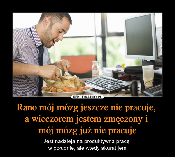Rano mój mózg jeszcze nie pracuje, a wieczorem jestem zmęczony i mój mózg już nie pracuje – Jest nadzieja na produktywną pracę w południe, ale wtedy akurat jem