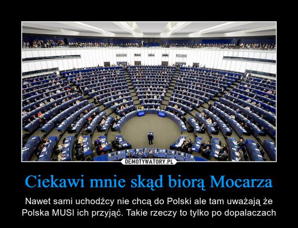 Ciekawi mnie skąd biorą Mocarza – Nawet sami uchodźcy nie chcą do Polski ale tam uważają że Polska MUSI ich przyjąć. Takie rzeczy to tylko po dopalaczach