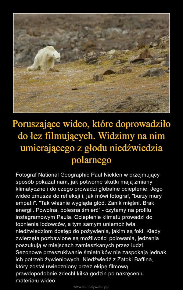 """Poruszające wideo, które doprowadziło do łez filmujących. Widzimy na nim umierającego z głodu niedźwiedzia polarnego – Fotograf National Geographic Paul Nicklen w przejmujący sposób pokazał nam, jak potworne skutki mają zmiany klimatyczne i do czego prowadzi globalne ocieplenie. Jego wideo zmusza do refleksji i, jak mówi fotograf, """"burzy mury empatii"""". """"Tak właśnie wygląda głód. Zanik mięśni. Brak energii. Powolna, bolesna śmierć"""" - czytamy na profilu instagramowym Paula. Ocieplenie klimatu prowadzi do topnienia lodowców, a tym samym uniemożliwia niedźwiedziom dostęp do pożywienia, jakim są foki. Kiedy zwierzęta pozbawione są możliwości polowania, jedzenia poszukują w miejscach zamieszkanych przez ludzi. Sezonowe przeszukiwanie śmietników nie zaspokaja jednak ich potrzeb żywieniowych. Niedźwiedź z Zatoki Baffina, który został uwieczniony przez ekipę filmową, prawdopodobnie zdechł kilka godzin po nakręceniu materiału wideo"""