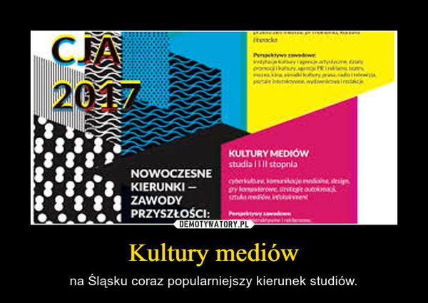 Kultury mediów – na Śląsku coraz popularniejszy kierunek studiów.