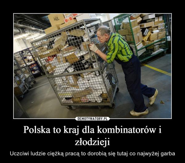 Polska to kraj dla kombinatorów i złodzieji – Uczciwi ludzie ciężką pracą to dorobią się tutaj co najwyżej garba