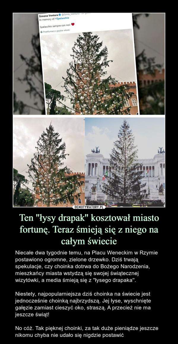 Ten ''łysy drapak'' kosztował miasto fortunę. Teraz śmieją się z niego na całym świecie – Niecałe dwa tygodnie temu, na Placu Weneckim w Rzymie postawiono ogromne, zielone drzewko. Dziś trwają spekulacje, czy choinka dotrwa do Bożego Narodzenia, mieszkańcy miasta wstydzą się swojej świątecznej wizytówki, a media śmieją się z ''łysego drapaka''.Niestety, najpopularniejsza dziś choinka na świecie jest jednocześnie choinką najbrzydszą. Jej łyse, wyschnięte gałęzie zamiast cieszyć oko, straszą. A przecież nie ma jeszcze świąt!No cóż. Tak pięknej choinki, za tak duże pieniądze jeszcze nikomu chyba nie udało się nigdzie postawić