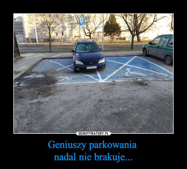 Geniuszy parkowania nadal nie brakuje... –