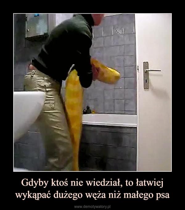 Gdyby ktoś nie wiedział, to łatwiej wykąpać dużego węża niż małego psa –