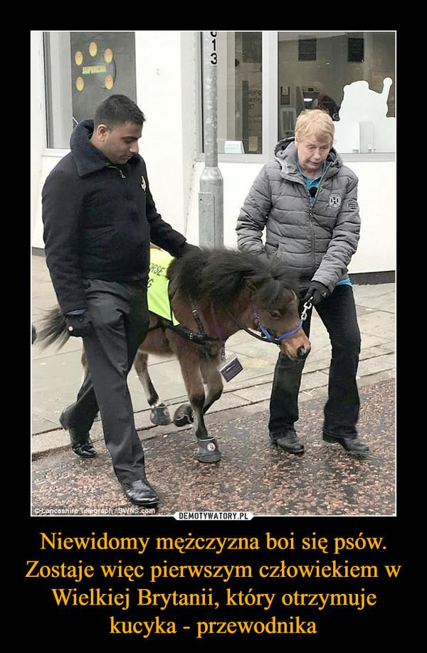 Niewidomy mężczyzna boi się psów. Zostaje więc pierwszym człowiekiem w Wielkiej Brytanii, który otrzymuje kucyka - przewodnika –