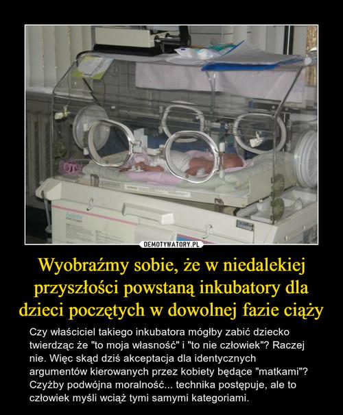 Wyobraźmy sobie, że w niedalekiej przyszłości powstaną inkubatory dla dzieci poczętych w dowolnej fazie ciąży