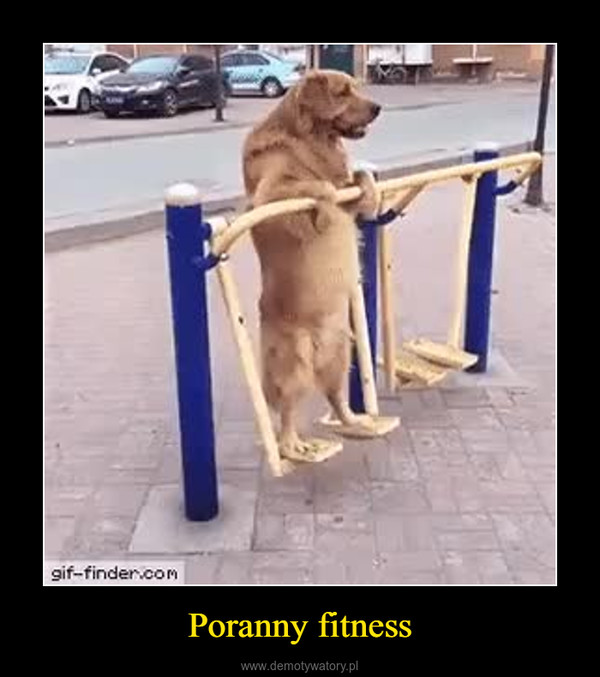 Poranny fitness –