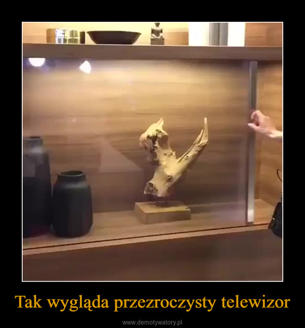 Tak wygląda przezroczysty telewizor –
