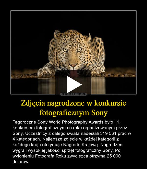 Zdjęcia nagrodzone w konkursie fotograficznym Sony – Tegoroczne Sony World Photography Awards było 11. konkursem fotograficznym co roku organizowanym przez Sony. Uczestnicy z całego świata nadesłali 319 561 prac w 4 kategoriach. Najlepsze zdjęcie w każdej kategorii z każdego kraju otrzymuje Nagrodę Krajową. Nagrodzeni wygrali wysokiej jakości sprzęt fotograficzny Sony. Po wyłonieniu Fotografa Roku zwycięzca otrzyma 25 000 dolarów