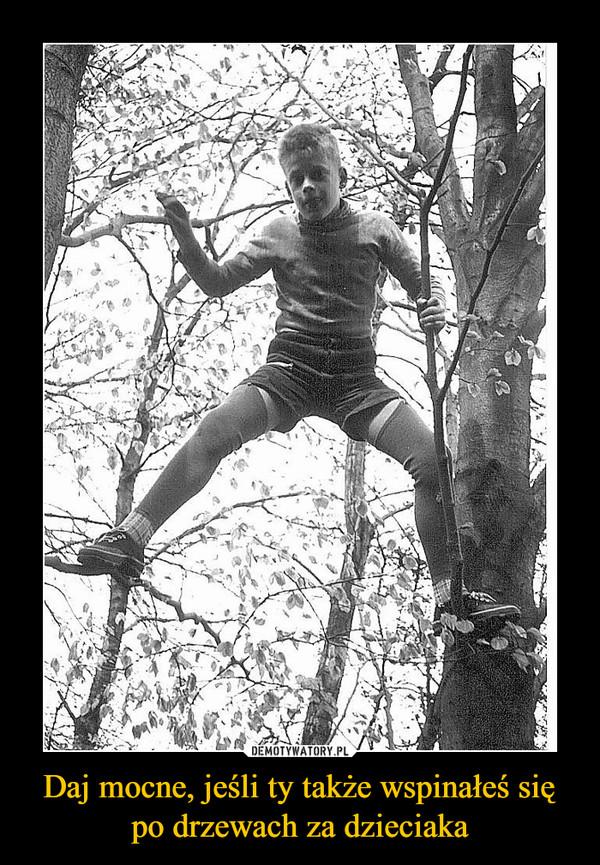Daj mocne, jeśli ty także wspinałeś się po drzewach za dzieciaka –