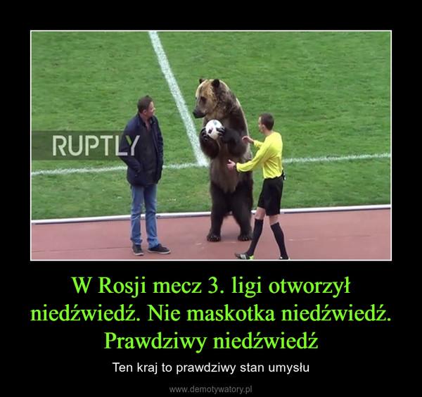 W Rosji mecz 3. ligi otworzył niedźwiedź. Nie maskotka niedźwiedź. Prawdziwy niedźwiedź – Ten kraj to prawdziwy stan umysłu