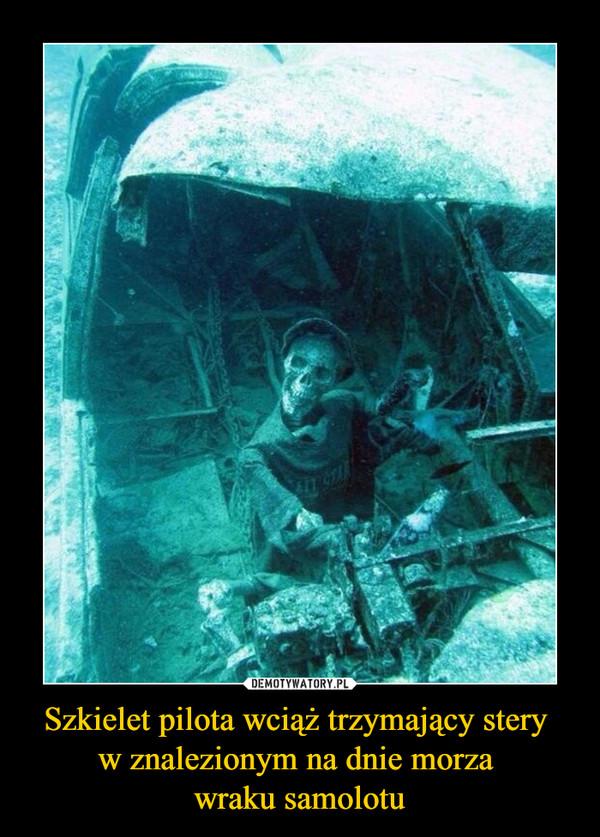 Szkielet pilota wciąż trzymający stery w znalezionym na dnie morza wraku samolotu –
