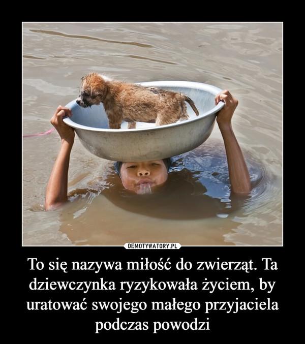 To się nazywa miłość do zwierząt. Ta dziewczynka ryzykowała życiem, by uratować swojego małego przyjaciela podczas powodzi –