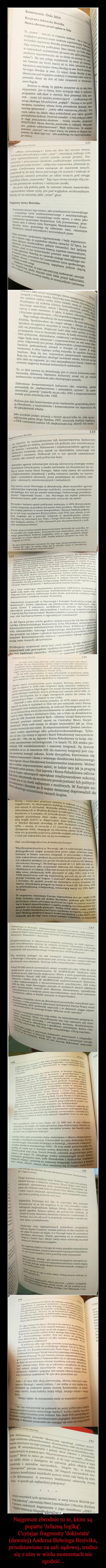 Najgorsze zbrodnie to te, które są poparte 'żelazną logiką'. Czytając fragmenty 'doktoratu' (dawniej) Andersa Behringa Breivika, przedstawione na sali sądowej, trudno się z nim w wielu momentach nie zgodzić... –