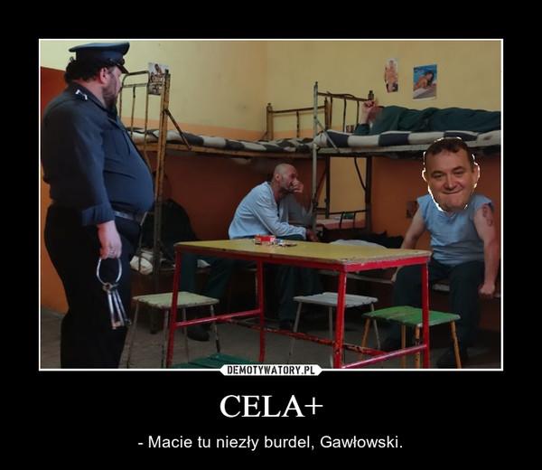 CELA+ – - Macie tu niezły burdel, Gawłowski.