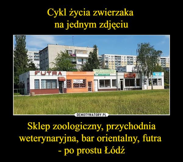Sklep zoologiczny, przychodnia weterynaryjna, bar orientalny, futra - po prostu Łódź –