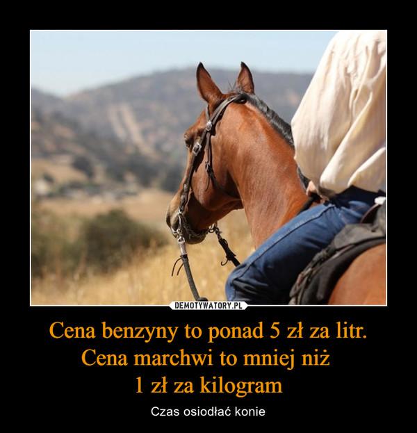 Cena benzyny to ponad 5 zł za litr.Cena marchwi to mniej niż 1 zł za kilogram – Czas osiodłać konie